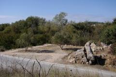 Zmijski kamen, Žminjača, Podstrana (foto Ivica Lolić Kaja)